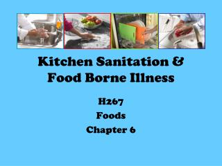 Kitchen Sanitation & Food Borne Illness