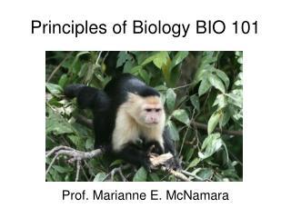 Principles of Biology BIO 101