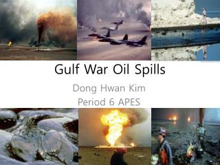 Gulf War Oil Spills