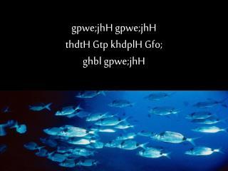 gpwe;jhH gpwe;jhH thdtH Gtp khdplH Gfo; ghbl gpwe;jhH