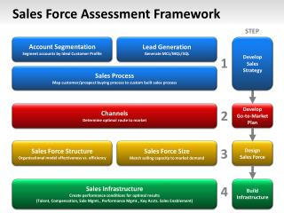 Sales Force Assessment Framework