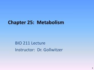 Chapter 25:  Metabolism