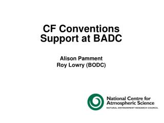 CF Conventions Support at BADC Alison Pamment Roy Lowry (BODC)
