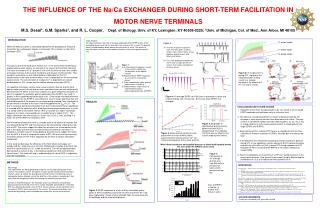 THE INFLUENCE OF THE Na/Ca EXCHANGER DURING SHORT-TERM FACILITATION IN  MOTOR NERVE TERMINALS