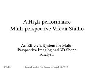 A High-performance Multi-perspective Vision Studio