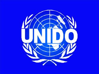 UNIDO  Technology Foresigh t;  Programme