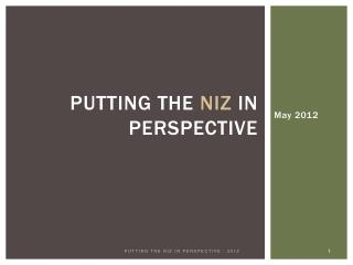 Putting the NIZ in perspective