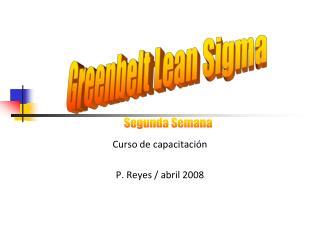 Curso de capacitaci n  P. Reyes