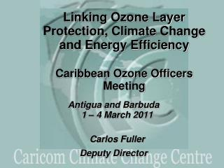 Antigua and Barbuda 1 – 4 March 2011 Carlos Fuller Deputy Director