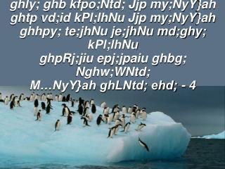 kfpikapd; uh[h mth; kfj;Jtk; epiwe;jth; kdnky;yhk; epiwANj kfpo;r;rpap;y; rpyph;f;FNj