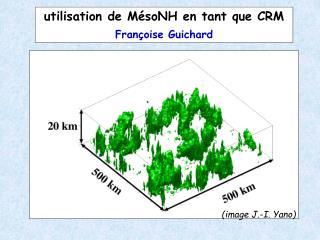 Utilisation de M soNH en tant que CRM   Fran oise Guichard