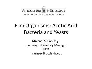 Film Organisms: Acetic Acid Bacteria and Yeasts