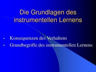 Die Grundlagen des instrumentellen Lernens