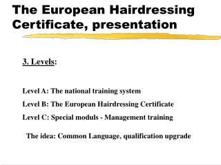 The European Hairdressing Certificate, presentation
