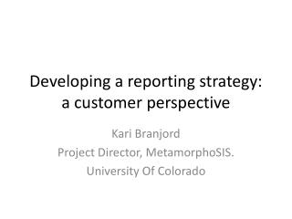 Developing a reporting strategy: a customer perspective