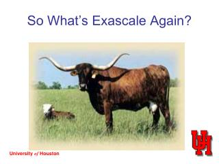 So What's Exascale Again?