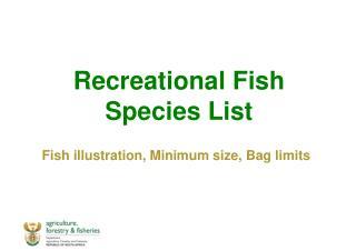 Recreational Fish Species List Fish illustration, Minimum size, Bag limits
