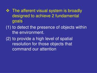 The afferent visual system is broadly designed to achieve 2 fundamental goals :