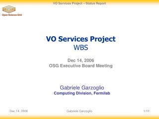 VO Services Project  WBS