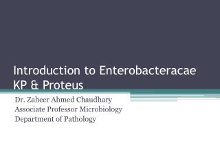 Introduction to  Enterobacteracae  KP & Proteus