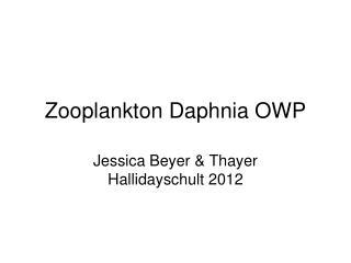 Zooplankton Daphnia OWP