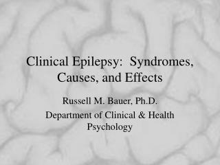 Clinical Epilepsy:  Syndromes, Causes, and Effects