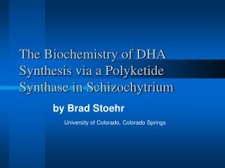 The Biochemistry of DHA Synthesis via a Polyketide Synthase in Schizochytrium