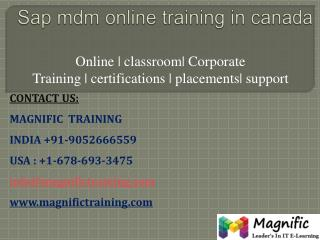 sap mdm online training in canada,pune