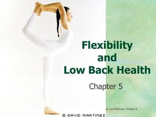 Flexibility and Low Back Health