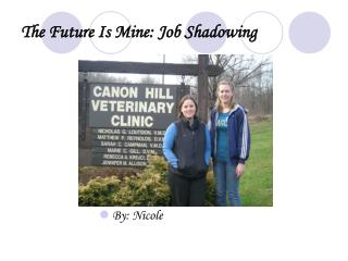 The Future Is Mine: Job Shadowing