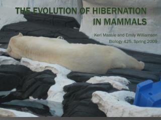 The Evolution of Hibernation in Mammals
