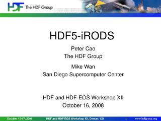 HDF5-iRODS