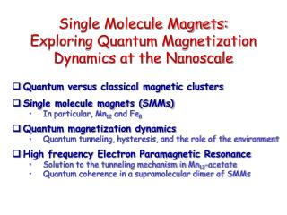 Single Molecule Magnets:  Exploring Quantum Magnetization Dynamics at the Nanoscale