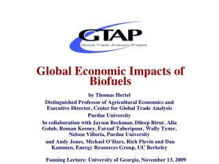 Global Economic Impacts of Biofuels
