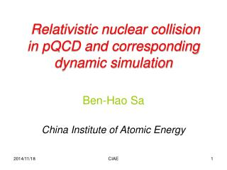 Relativistic nuclear collision  in pQCD and corresponding   dynamic simulation