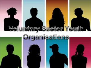 Voluntary Sector Youth Organisations