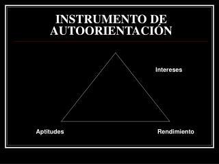 INSTRUMENTO DE AUTOORIENTACIÓN