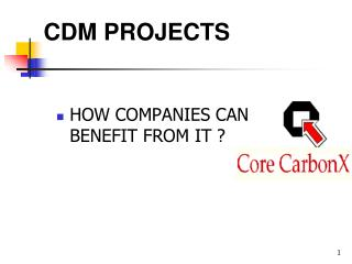 CDM PROJECTS