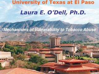 University of Texas at El Paso Laura E. O�Dell, Ph.D.