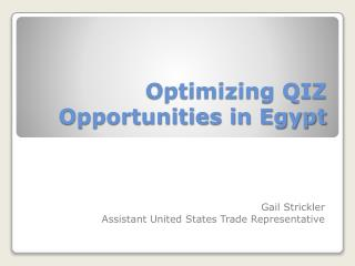 Optimizing QIZ  Opportunities in Egypt