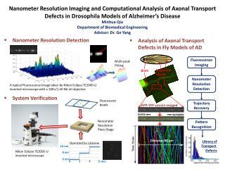 Nanometer Resolution Detection