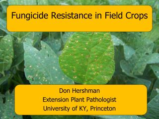 Fungicide Resistance in Field Crops