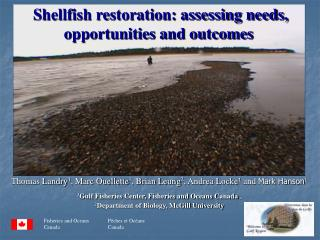 Shellfish restoration: assessing needs, opportunities and outcomes
