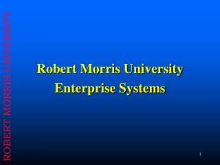 Robert Morris University  Enterprise Systems