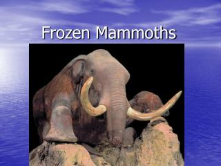 Frozen Mammoths