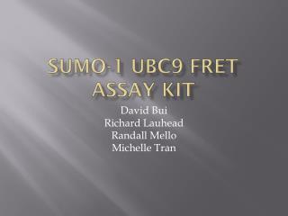 SUMO-1 UBC9 FRET Assay Kit