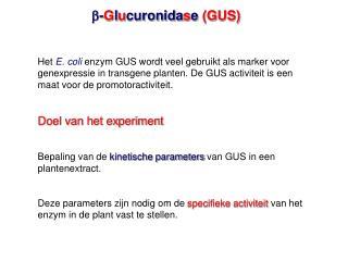 -Glucuronidase GUS