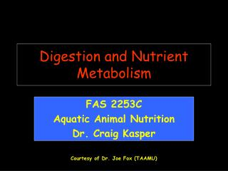 Digestion and Nutrient Metabolism