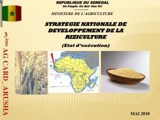 STRATEGIE NATIONALE DE DEVELOPPEMENT DE LA RIZICULTURE (Etat d'exécution)