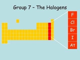 Group 7   The Halogens